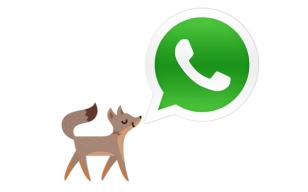 facebook-whatsapp-fox-308x192