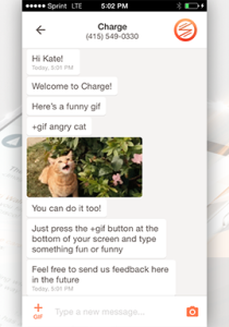 VOICE BOT IN CHARGE MESSENGER