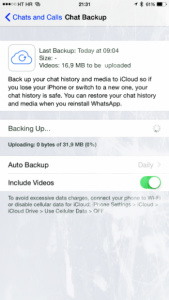 WhatsApp chats in more details